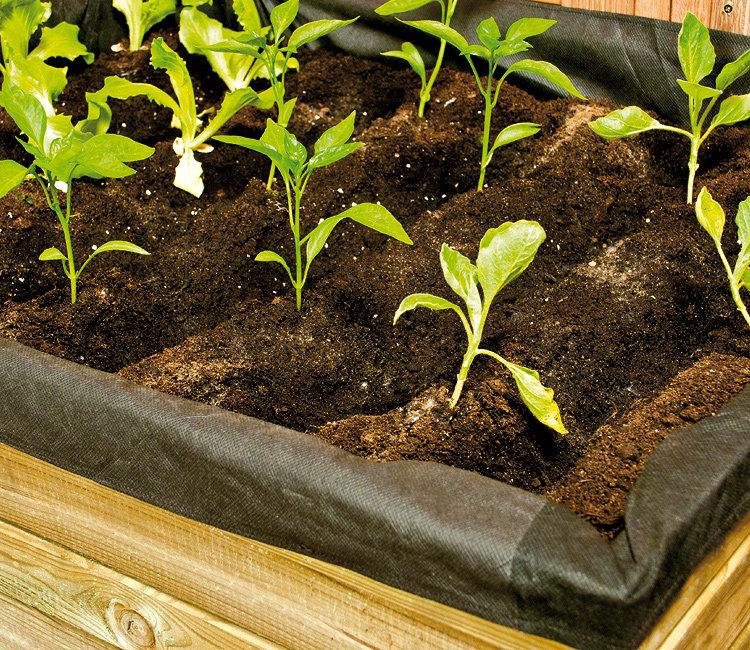 Αστικός Κήπος Από τη γλάστρα στο τραπέζι σας1