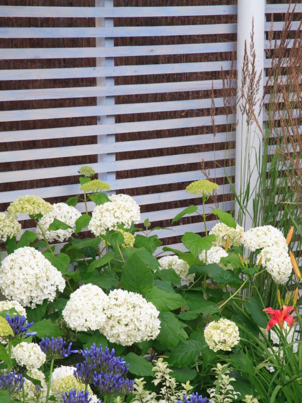 Είδη για φράχτες Κήπου9