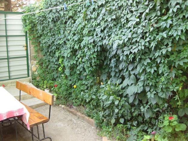 Πράσινες Ιδέες σχεδιασμού κήπου και αυλής1