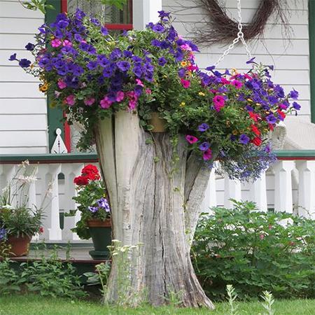 ιδέες με κορμούς δέντρου στον κήπο2