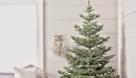 χριστουγεννιάτικες διακοσμήσεις σε Ονειρικά Λευκά1