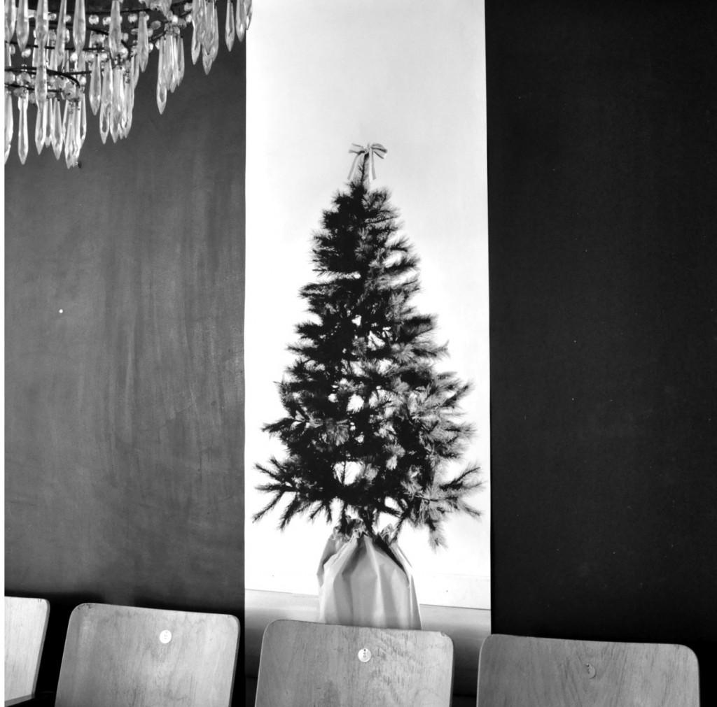 Diy χριστουγεννιάτικα δέντρα7