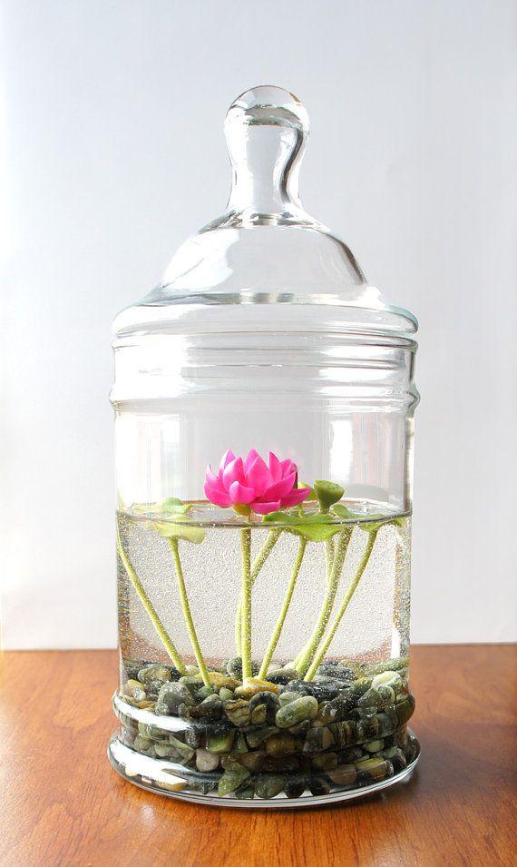 Ιδέες Εσωτερικής διακόσμησης με φυτά17