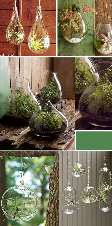 Ιδέες Εσωτερικής διακόσμησης με φυτά23
