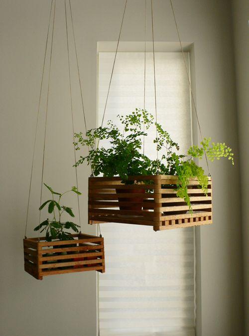 Ιδέες Εσωτερικής διακόσμησης με φυτά3