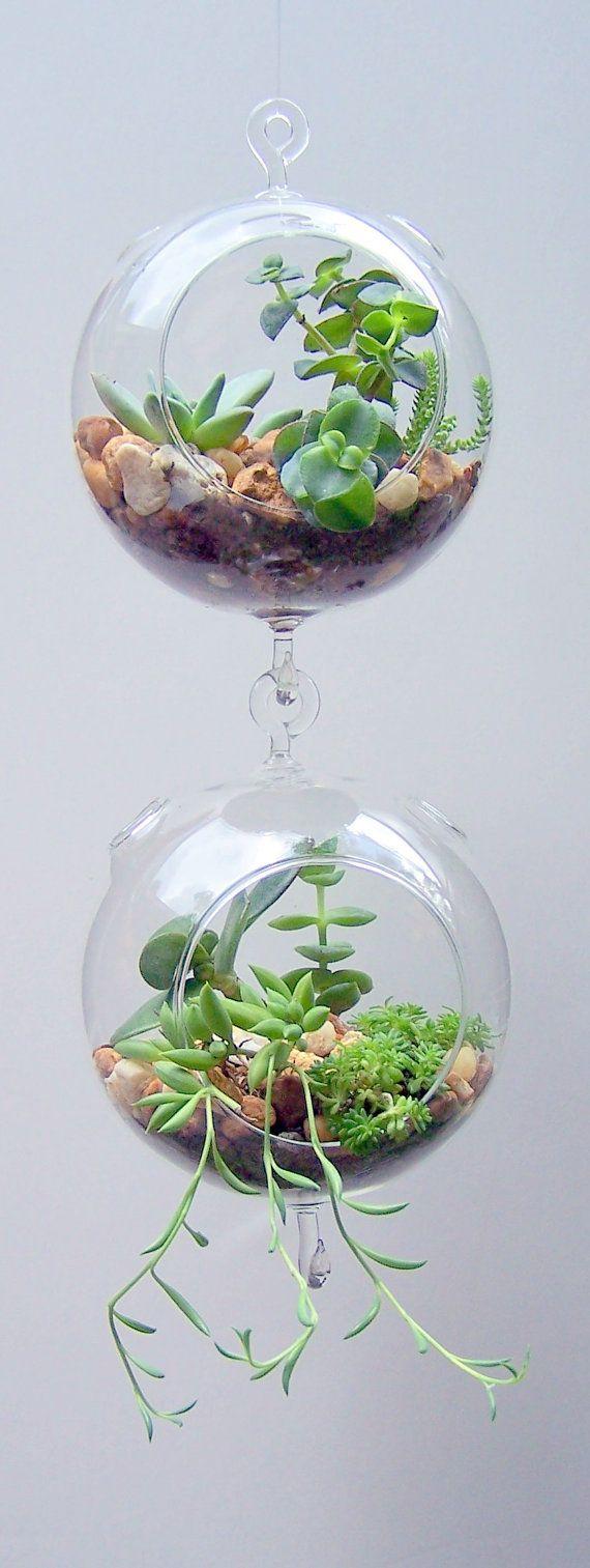 Ιδέες Εσωτερικής διακόσμησης με φυτά4