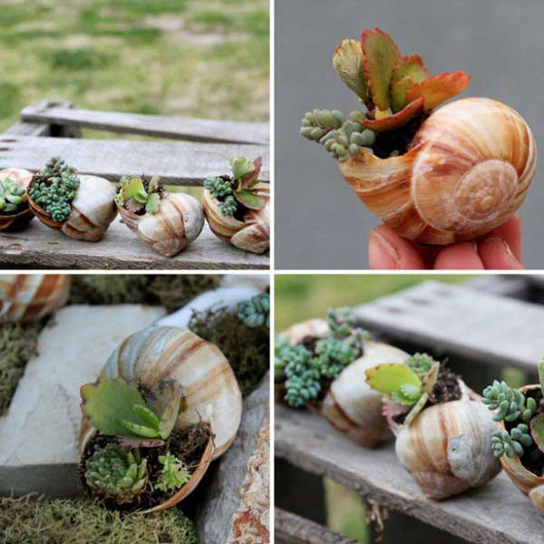 DIY Γλάστρες Κήπου4