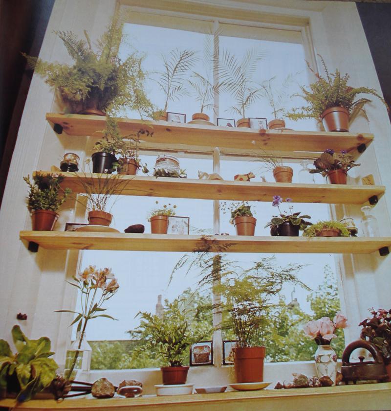 DIY Ιδέες Βότανο κήπων Παραθύρων για την κουζίνα σας17