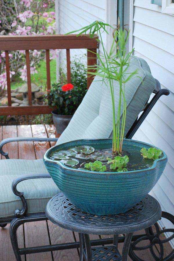 DIY μίνι λιμνούλες σε γλάστρα3