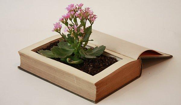 Πρωτότυπες γλάστρες από άχρηστα αντικείμενα και φυσικά υλικά12
