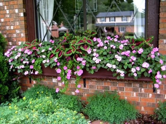 Ιδέες με ζαρτινιέρες λουλουδιών για τα παράθυρα σας15