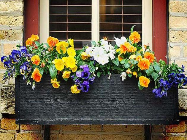Ιδέες με ζαρτινιέρες λουλουδιών για τα παράθυρα σας17