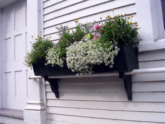 Ιδέες με ζαρτινιέρες λουλουδιών για τα παράθυρα σας3