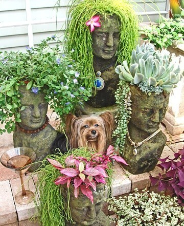 Διασκέδαση με τα φυτά στον κήπο5