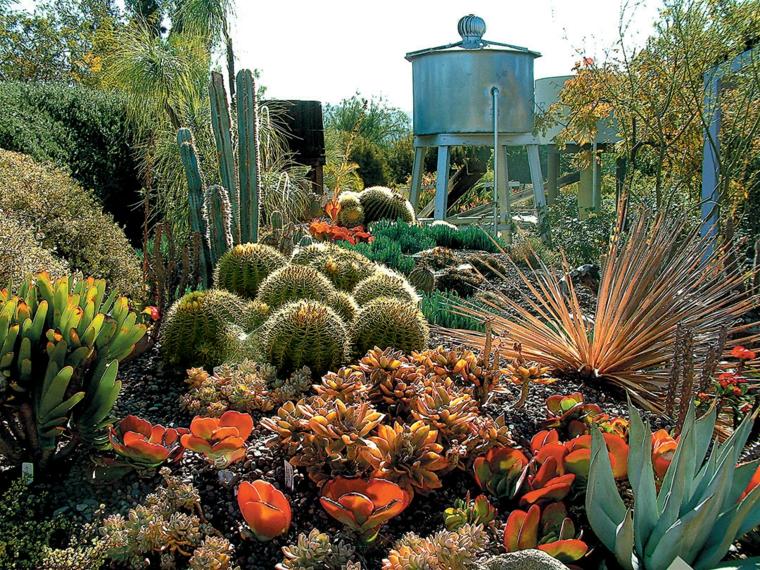 Κήποι με κάκτους2
