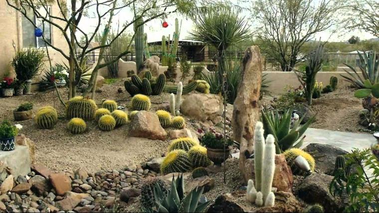 Κήποι με κάκτους48