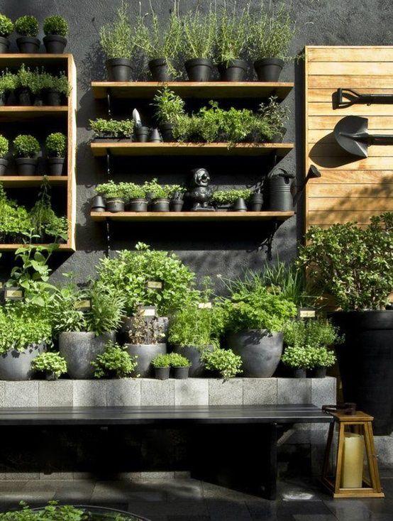 θεραπευτική γωνιά με φυτά10