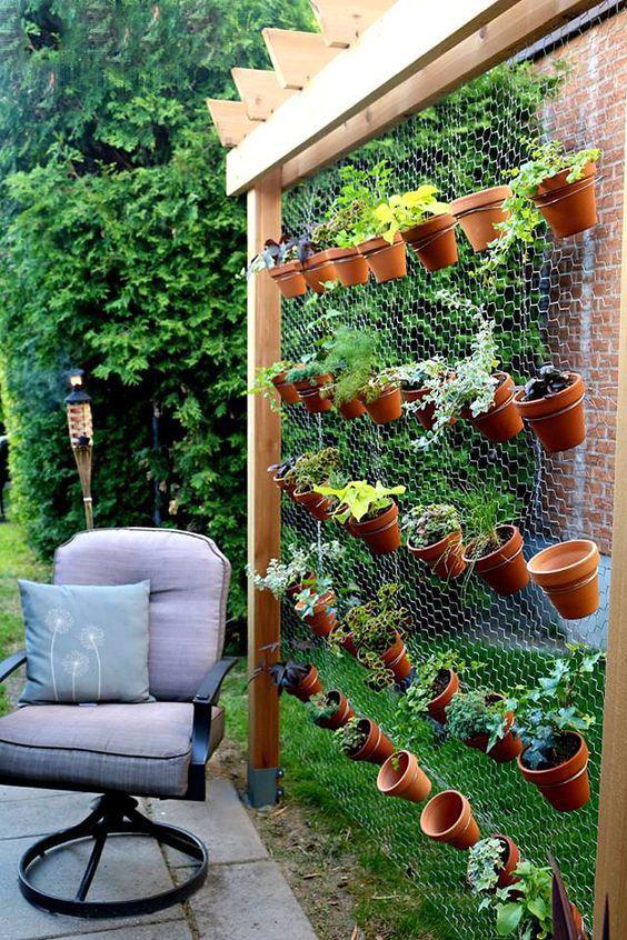 θεραπευτική γωνιά με φυτά19