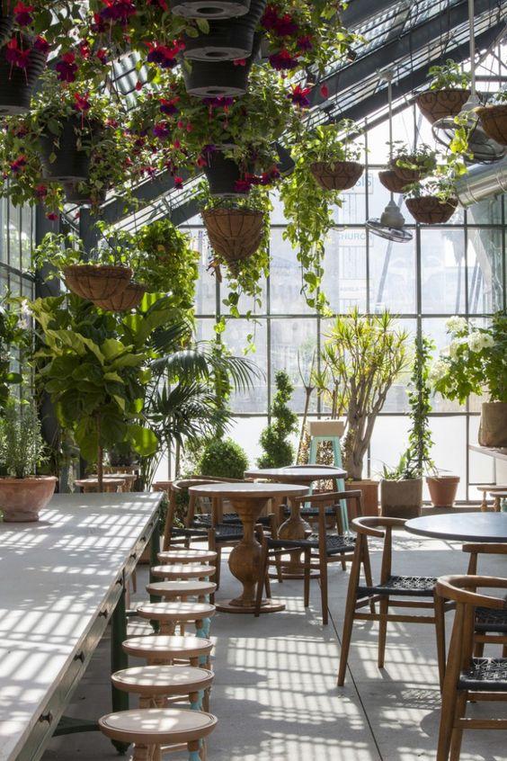θεραπευτική γωνιά με φυτά21