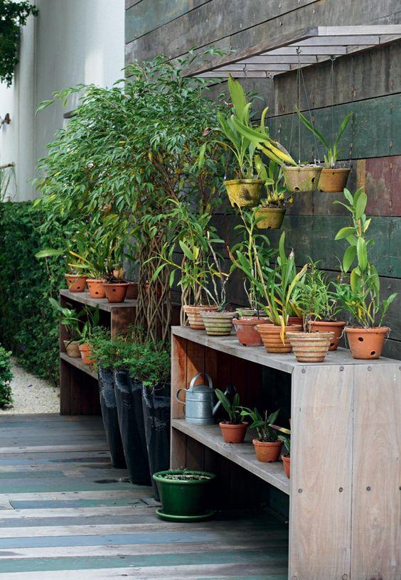 θεραπευτική γωνιά με φυτά24