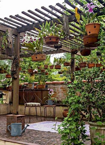 θεραπευτική γωνιά με φυτά4