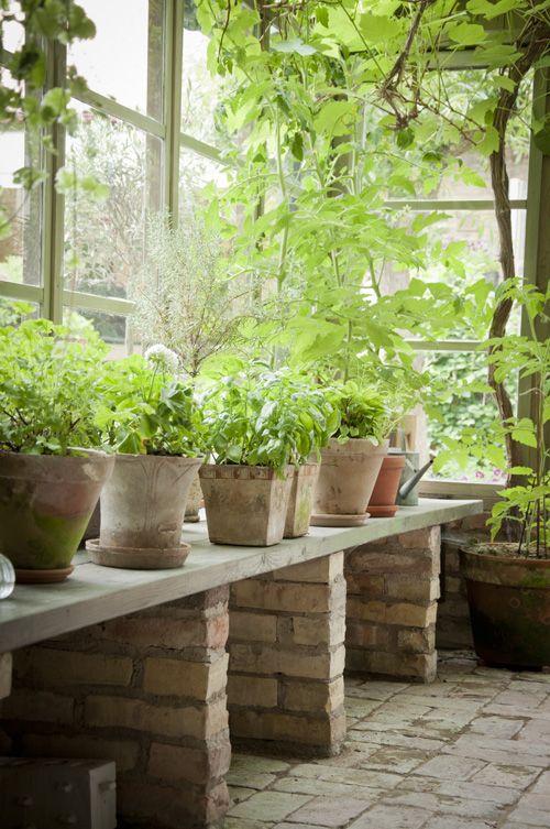 θεραπευτική γωνιά με φυτά8