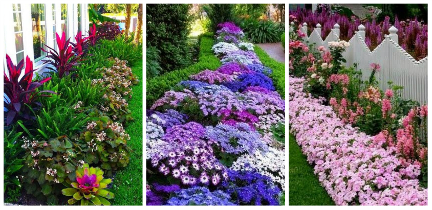 Άνοιξη, η τέλεια εποχή για να φυτέψετε λουλούδια