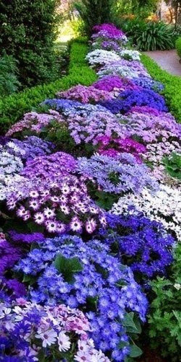 Άνοιξη, η τέλεια εποχή για να φυτέψετε λουλούδια15