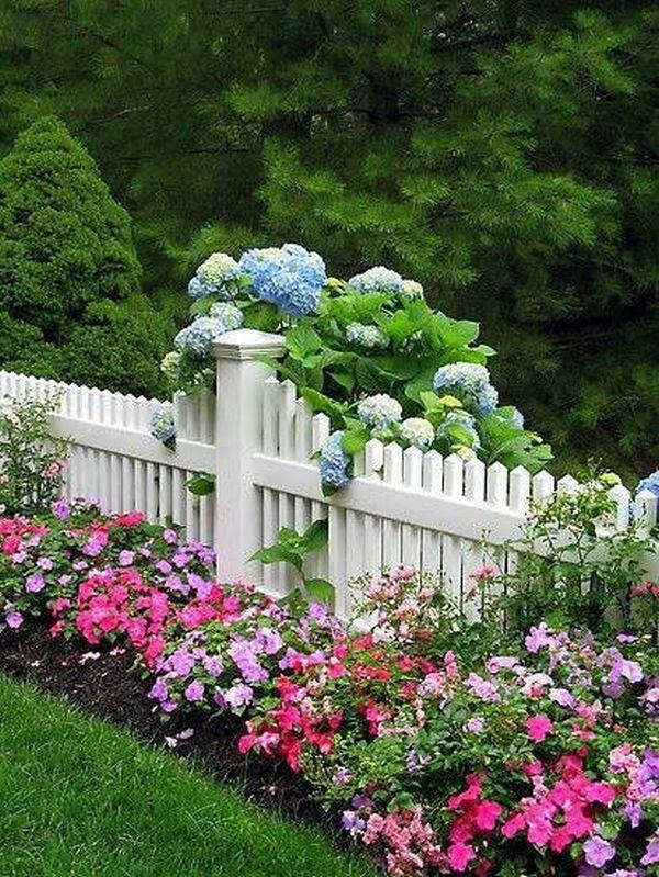 Άνοιξη, η τέλεια εποχή για να φυτέψετε λουλούδια3