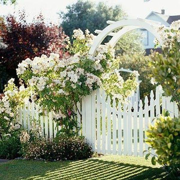 Άνοιξη, η τέλεια εποχή για να φυτέψετε λουλούδια7
