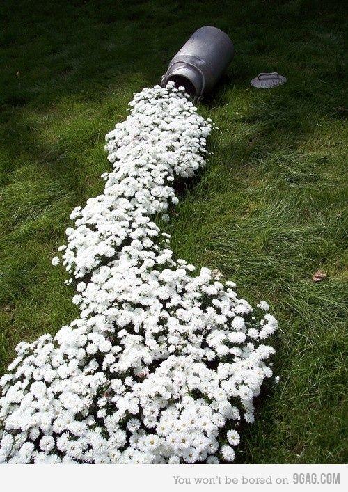 Έμπνευσμένες γλάστρες λουλουδιών10