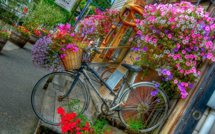 διάκοαμηση κήπου με ποδήλατα5