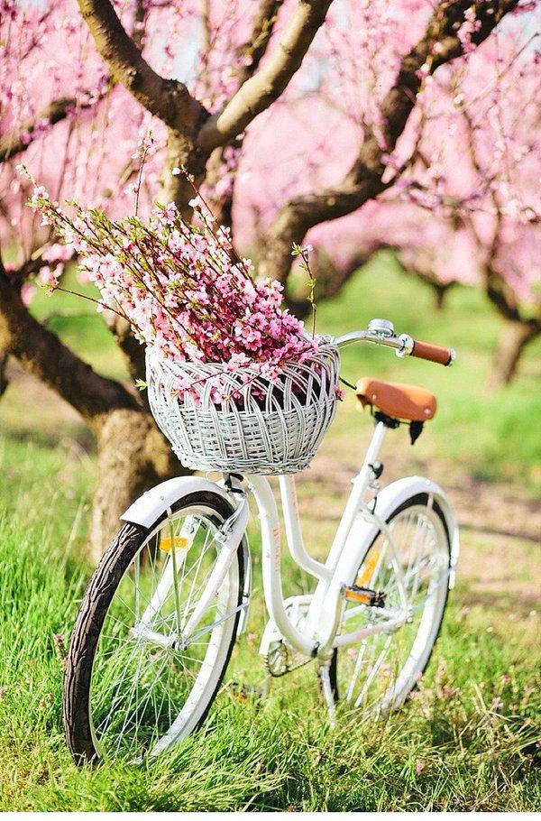 ιδέες επαναχρησιμοποίησης ποδηλάτου14