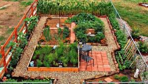 Ιδέες με Φανταστικούς λαχανόκηπους1