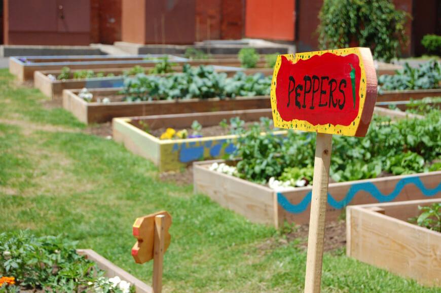 Ιδέες με Φανταστικούς λαχανόκηπους2
