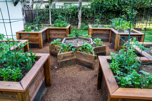 Ιδέες με Φανταστικούς λαχανόκηπους21