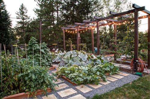Ιδέες με Φανταστικούς λαχανόκηπους23
