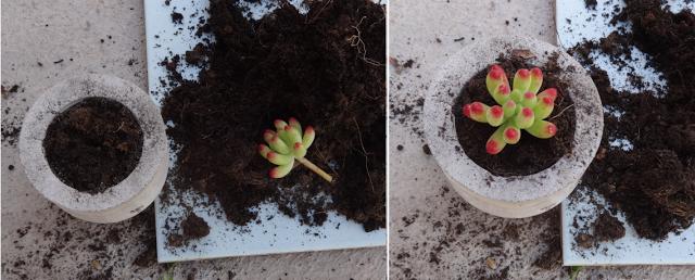 Μικρές DIY γλάστρες από τσιμέντο10