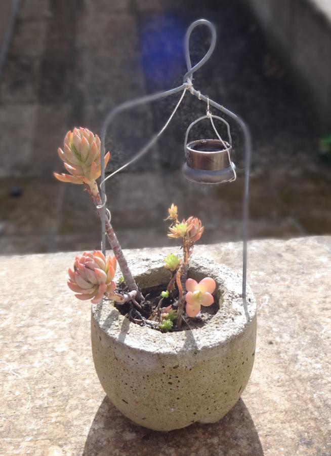 Μικρές DIY γλάστρες από τσιμέντο12