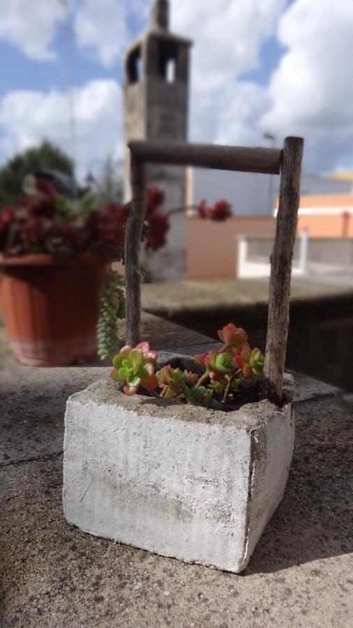 Μικρές DIY γλάστρες από τσιμέντο13