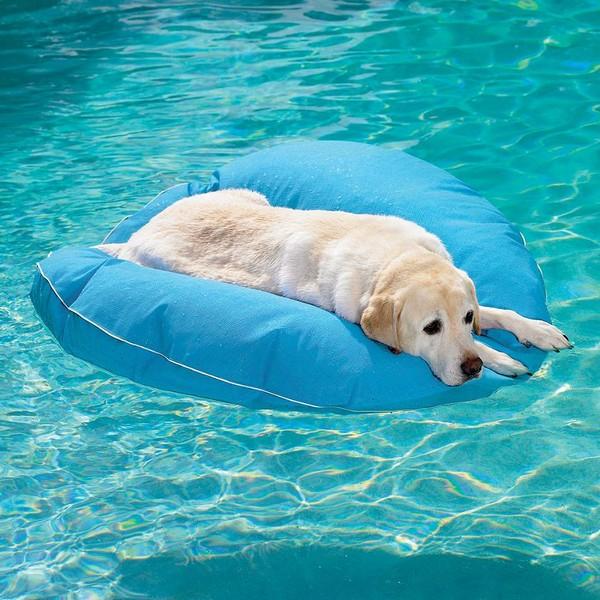 υπαίθρια κρεβάτια σκύλων11