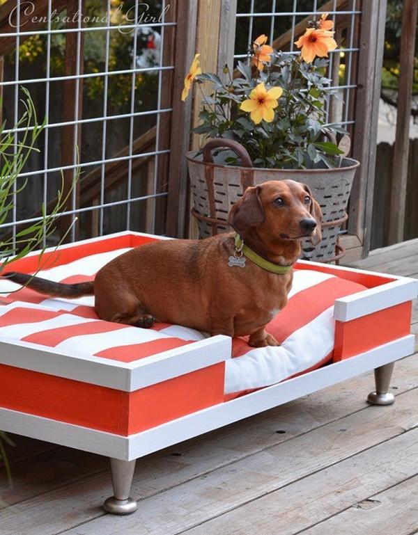 υπαίθρια κρεβάτια σκύλων12