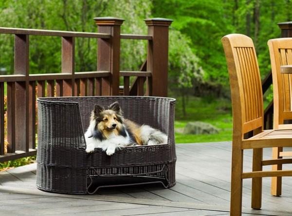υπαίθρια κρεβάτια σκύλων5