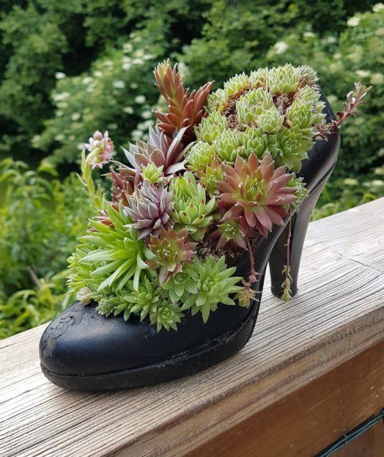 γλαστρες από παλιά παπούτσια6