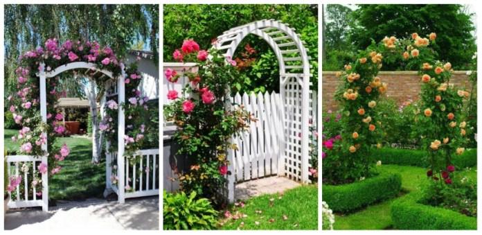 ιδέες από καμάρες κήπου
