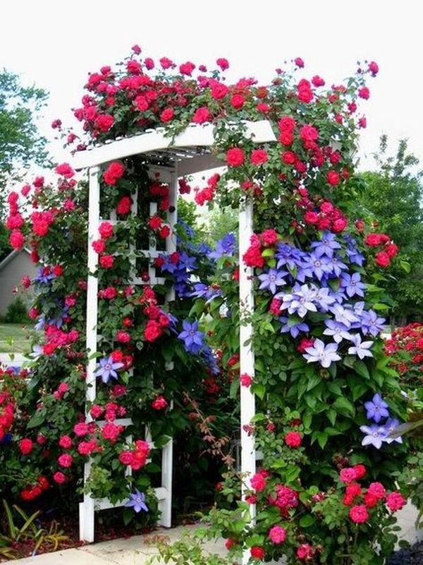 ιδέες από καμάρες κήπου10