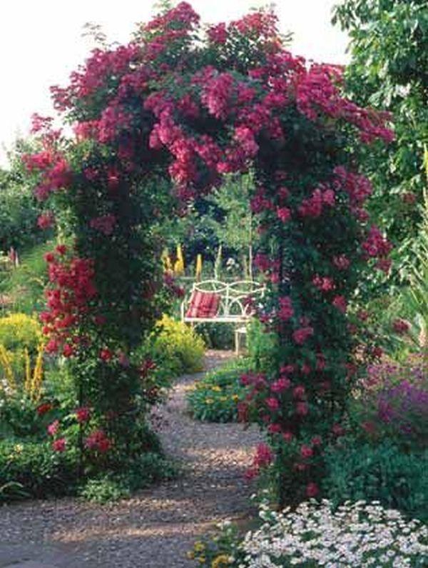 ιδέες από καμάρες κήπου4