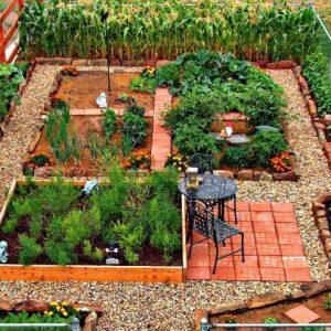 24 Ιδέες με Φανταστικούς λαχανόκηπους