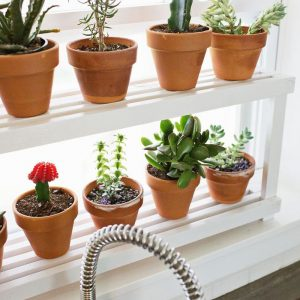 18 DIY Ιδέες Βοτανό κήπων Παραθύρων για την κουζίνα σας
